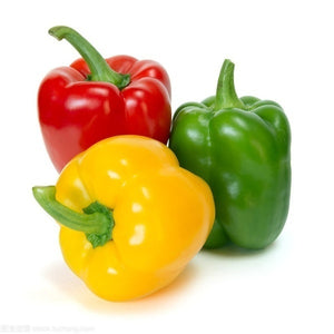 500/1000/1500/2000 PCS Sweet Pepper Seed Yellow Red Green Sweet Bell Pepper Seeds Vegetable Paprika