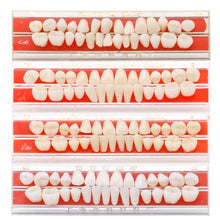 Load image into Gallery viewer, 28pcs/set Dents Teeths Dent Alloy Pin Porcelain Dental Materials Dentures Colors Teeth Care Tools Whitening Dents Teeth