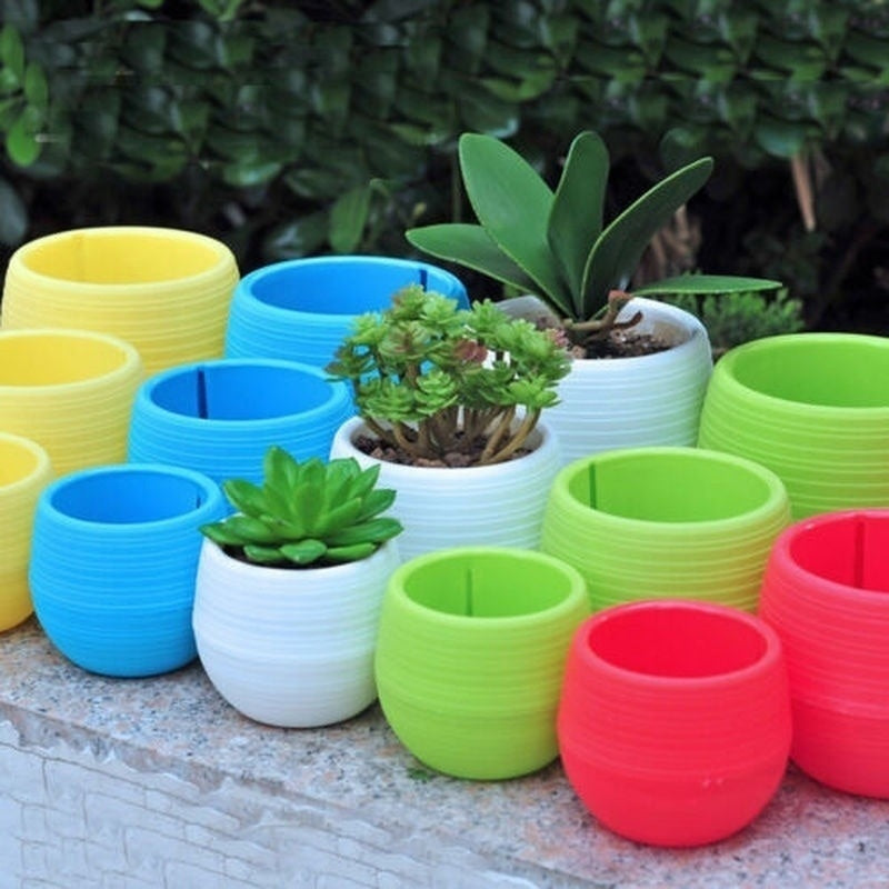 3Pcs  Multicolour  Mini Plastic Flower Pot Succulent Plant For Wedding Home Party Decor Cute 6.5*7CM