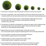 Aquatic Arts Moss Balls, Aquarium Natural Living Plant Decoration / Habitat For Live Fish