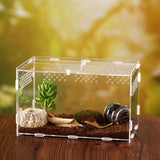 Transparent Spider Container Frogs Feeding Box Insect Snakes Breeding Box Hatching Terrariums Reptile Incubator Insect Supplies
