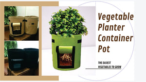 Provide Your plants a Home with These Planter Pots