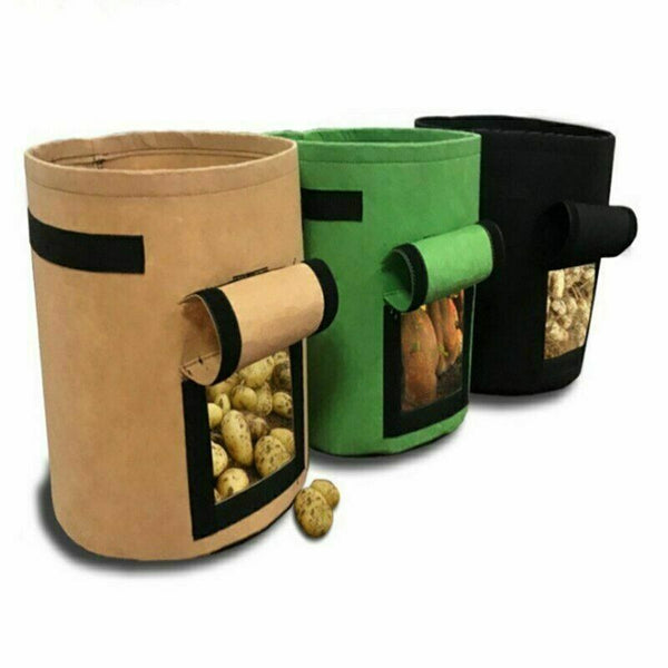 vegetable planter container pot