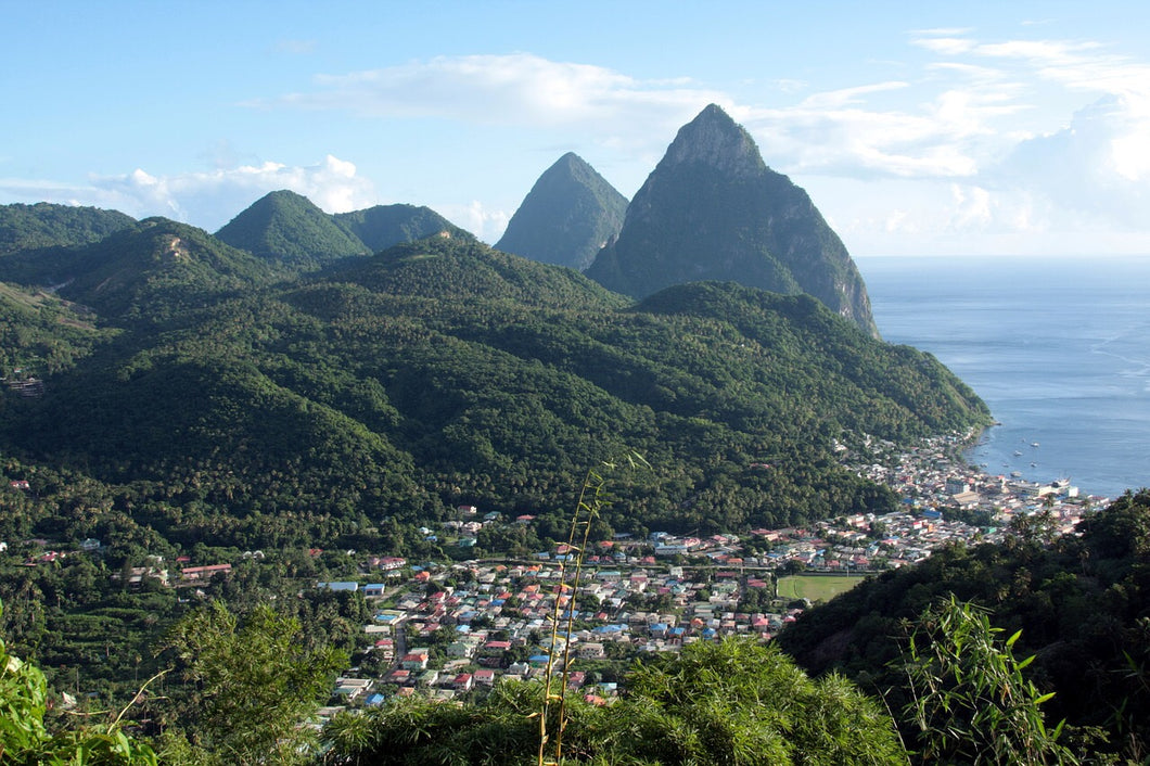 Citizenship of Saint Lucia - National Economic Fund - single applicant - Citizenship of Saint Lucia