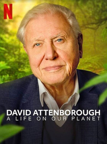 David Attenborough: A Life on Our Planet | Blog