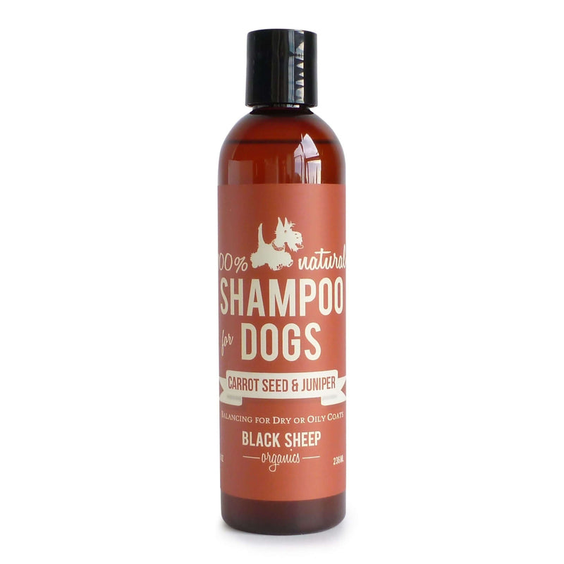 Black Sheep Organics - Carrotseed & Juniper Organic Shampoo - Dog Bath (2 Sizes)