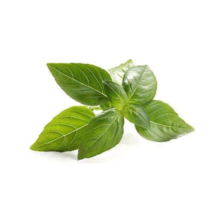 Arnilene Seafoods (Quezon City) Basil Leaves 100g