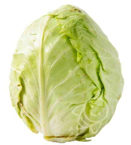 Arnilene Seafoods (Quezon City) Cabbage Green 1kg