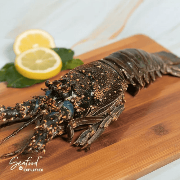 Arnilene Seafoods (Quezon City) Large Spiny Lobster 1kg (1kg per pc)