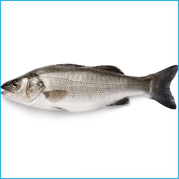 Arnilene Seafoods (Quezon City) Sea Bass 1kg