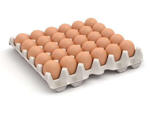 Daily Harvest PH (Valenzuela City) Free Range All Natural Egg - Large 1tray (30pcs)