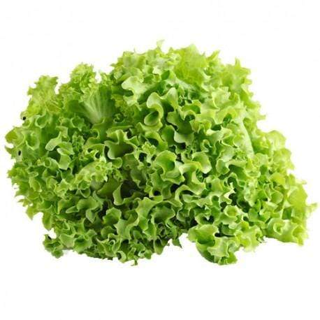 Narcisa's Vegetable Supplier & Delivery (Quezon City) Lettuce Green Ice 500g