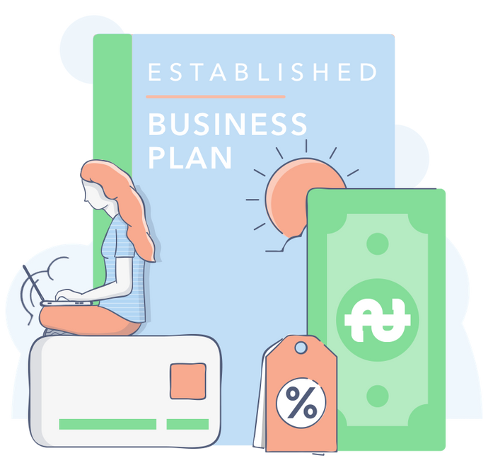 Established Company Business Plan