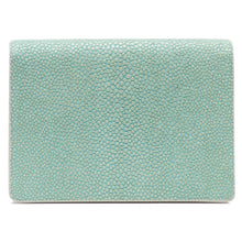 Load image into Gallery viewer, Taylor-Shagreen and Napa leather card case-Sky