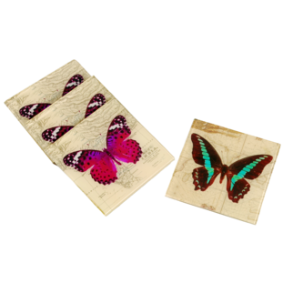 VINTAGE BUTTERFLY COASTER