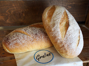 White Bloomer - Large