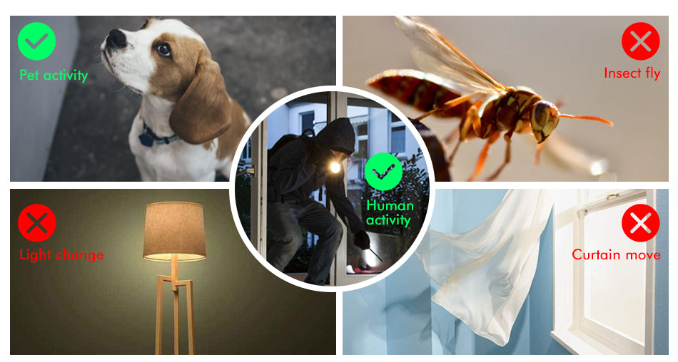 Insects & Human Motion Detection Camera