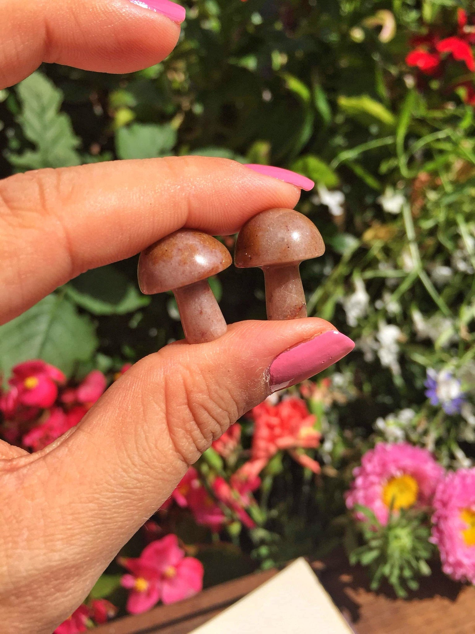 Mini Brown Aventurine Mushrooms