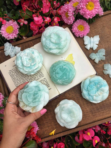 Beautiful Huge Caribbean calcite roses
