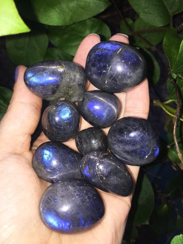 Rare Blue Labradorite tumble stones with cats eye