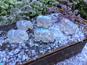 Aura quartz Polar bears