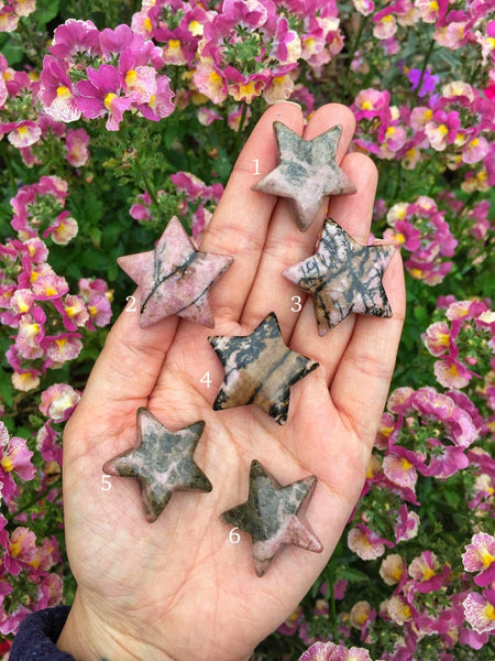 Mini Rhodonite stars
