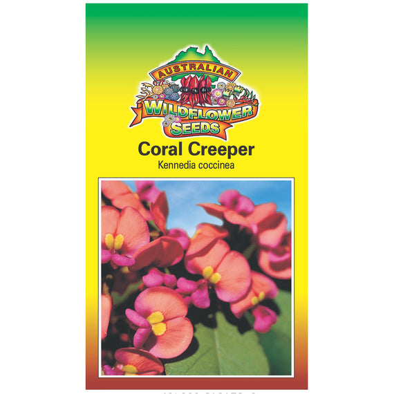 Coral Creeper Seeds
