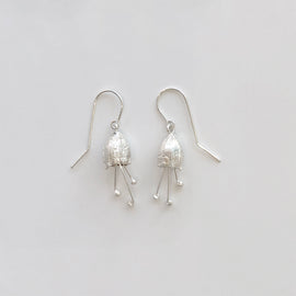 Eucalyptus froggattii Earrings
