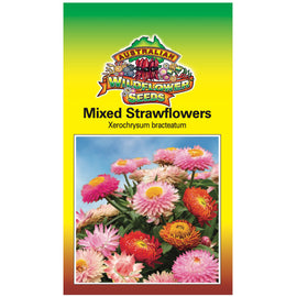 Mixed Strawflowers Seeds