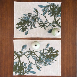 Coast Banksia Placemats