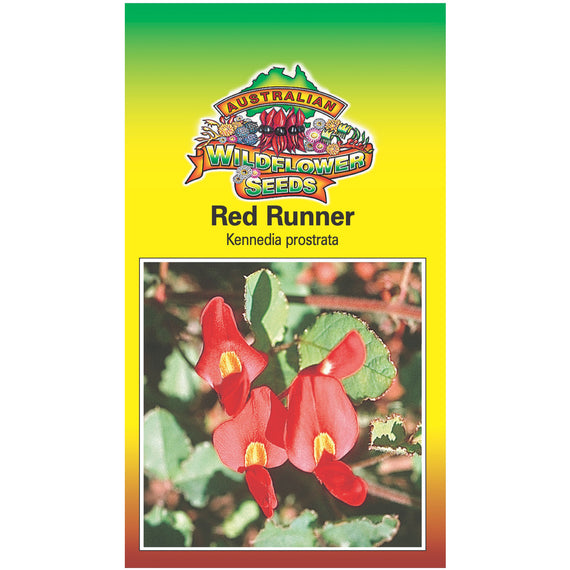 Red Runner Seeds