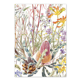 Swan Coastal Plain Wildflowers Card