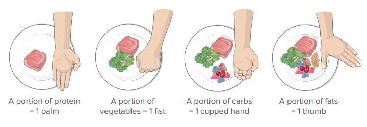 putting a meal together using hand portion sizes