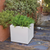 Square colored pot NARCISO 35