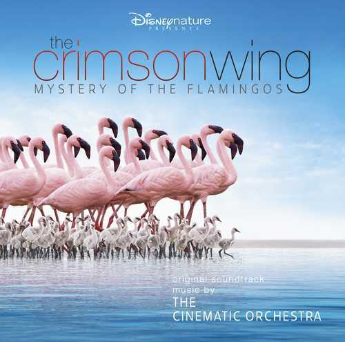 Cinematic Orchestra with the London Metropolitan Orchestra, The - The Crimson Wing - Mystery of The Flamingoes RSD 2020