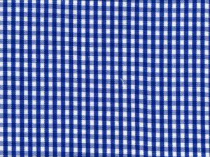 Blue Mini Gingham Broadcloth