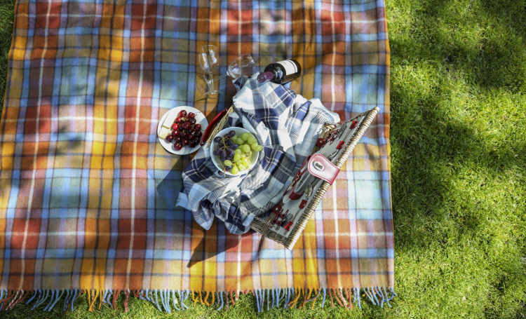 picnic blanket colourful