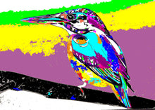 Load image into Gallery viewer, Kingfisher