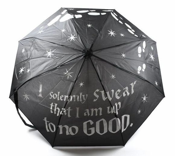 Marauder's Map Color-Changing Art Umbrella -  This Harry Potter umbrella features white