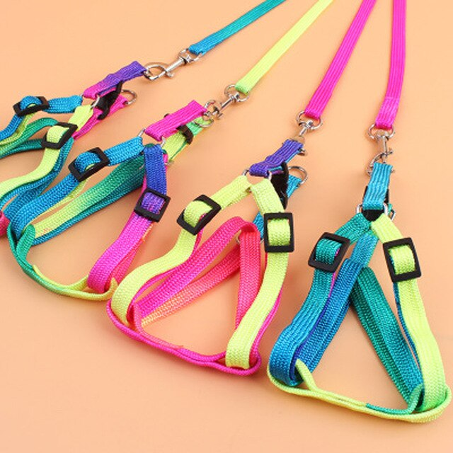 Pet Cat Dog Kitten Adjustable Colorful Harness