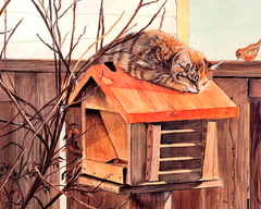 Cat on a Birdhouse