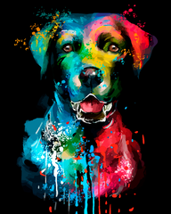 Colorful Dog