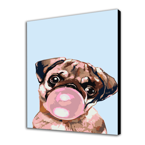 Pug And Chewing Gum
