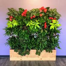 Load image into Gallery viewer, Florafelt Compact Living Wall Kit