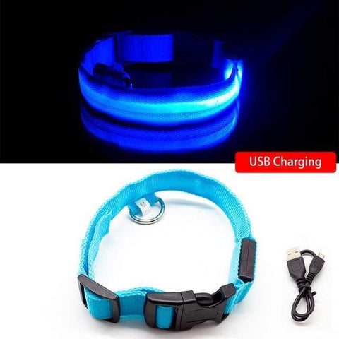 K3N VENTURES Blue USB Charging / L NECK 45-52 CM USB Charging Anti-Lost Collar Leads For Pets