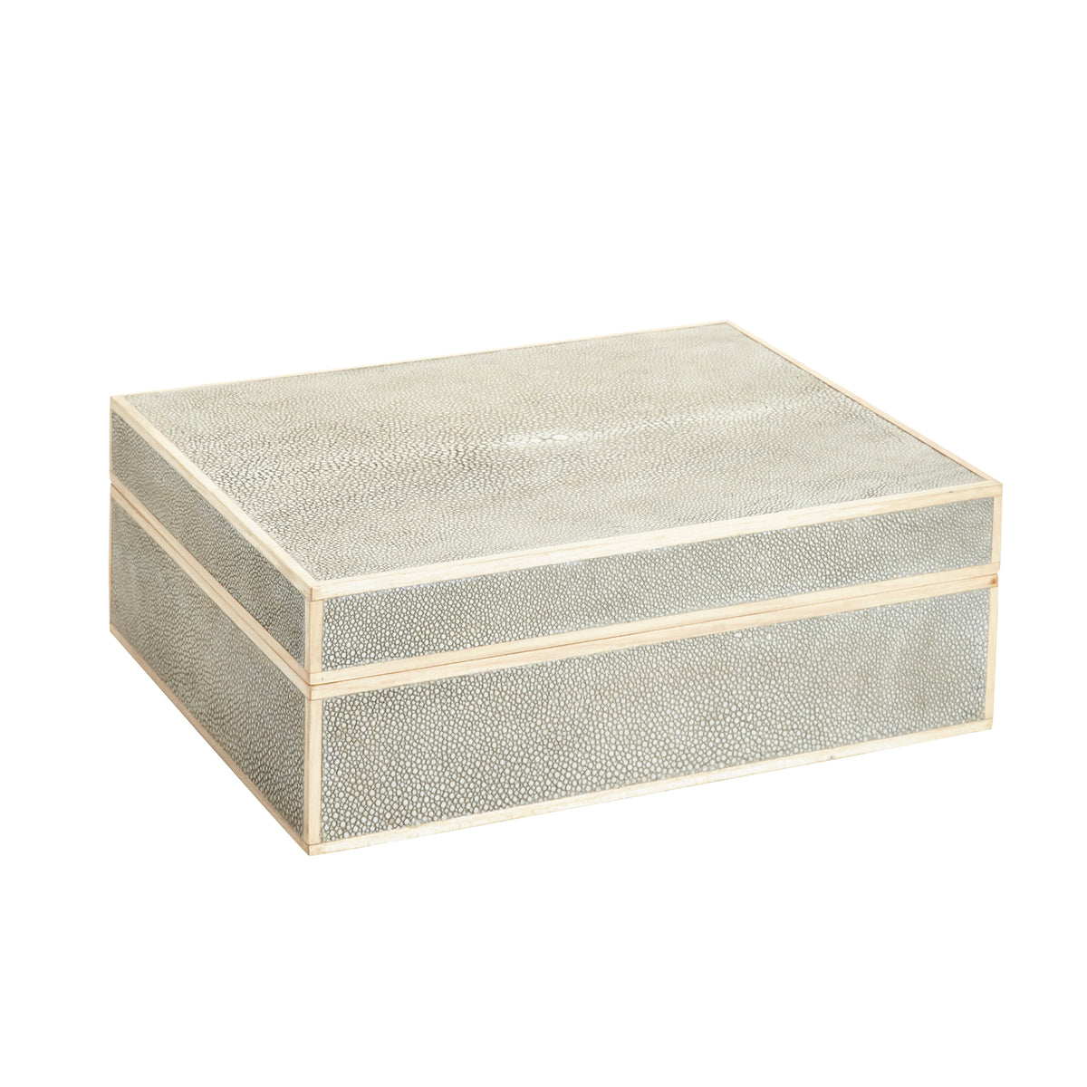 Small Cooper Sand Textured Shagreen Box
