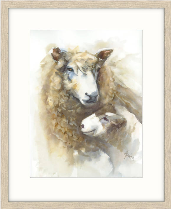 Mother's Love for Baby Lamb