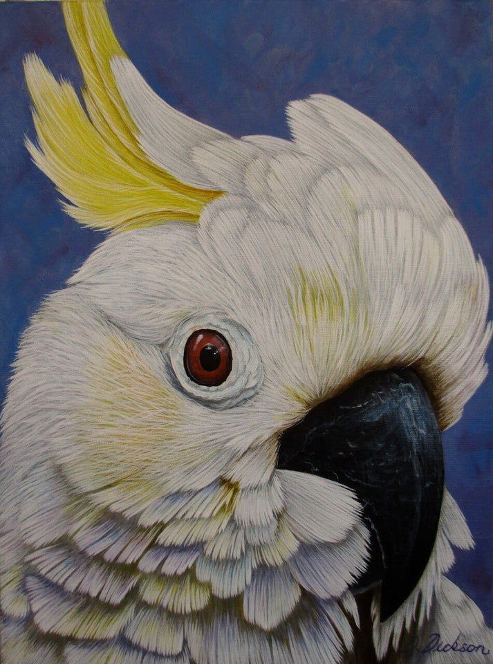Cockatoo Portrait