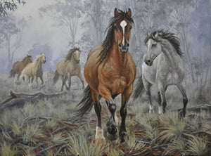 Mares In The Mountain Mists
