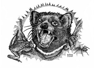 Tasmanian devils night